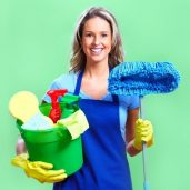 cleaning lady (2)
